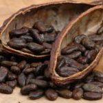 Coklat Bandrek Hanjuang