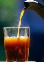 Minuman hangat yang dikonsumsi waktu musim hujan