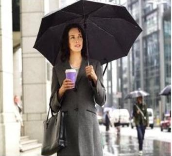 Minuman Yg Cocok Utk Musim Hujan Cuman Bandrek Hanjuang