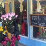Wisata Kampung Tulip Bandung