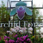 Wisata Orchid Forest Cikole Lembang
